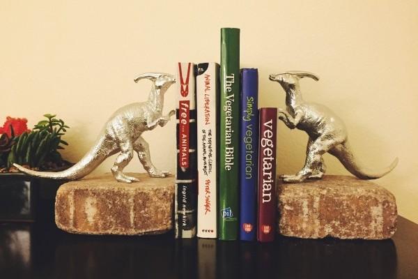 DIY-Animal-bookends
